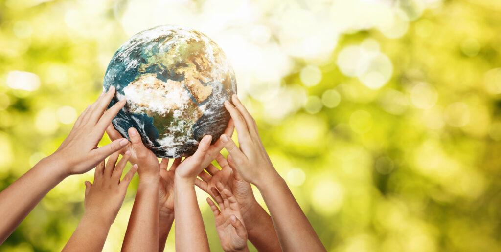 Sustainable Team Building Activities Retreats